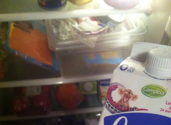 @idiot your old avatar lives in my fridge.