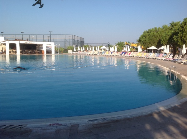 Early morning by the pool. You have to get up early to bag a bed!