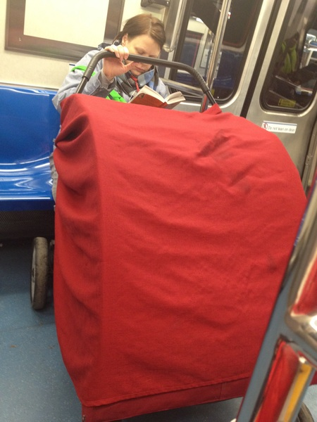 This chick on the train with a huge doggy stroller. Lmao only in New York